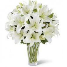 Vazoda Beyaz Lilyum Aranjmanı