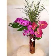 Pembe Orkide ve Antoryum