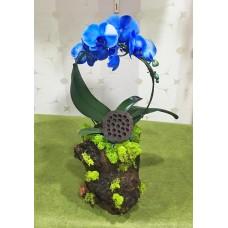 Kütük Saksıda Mavi Orkide