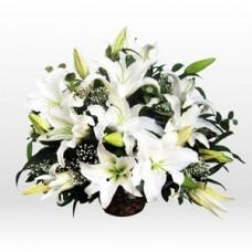 Sepette Beyaz Lilyum Aranjmanı