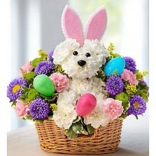 Tavşanlı Renkli Sepet Aranjman