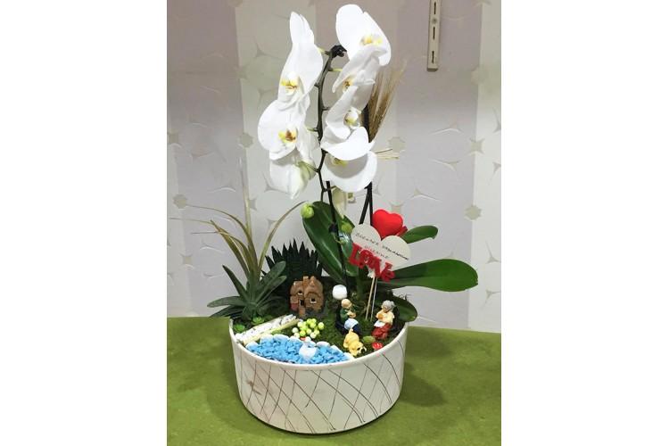 Orkide Aranjmanlı Teraryum
