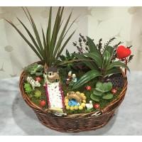 Canlı Çiçeklerle Sepet Teraryum
